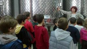 Οι μαθητές της Γ' τάξης μαθαίνουν για το κρασί!!!