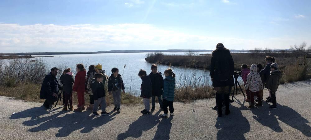 Κέντρο Περιβαλλοντικής Εκπαίδευσης Βιστωνίδας