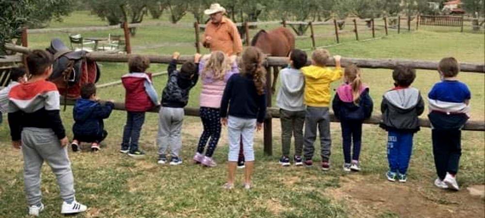 Γνωρίζοντας το άθλημα της ιππασίας